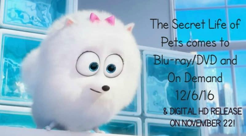 Secret Life Pets