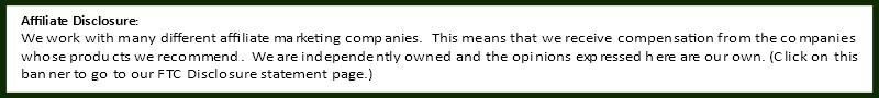 affiliate disclosure-image